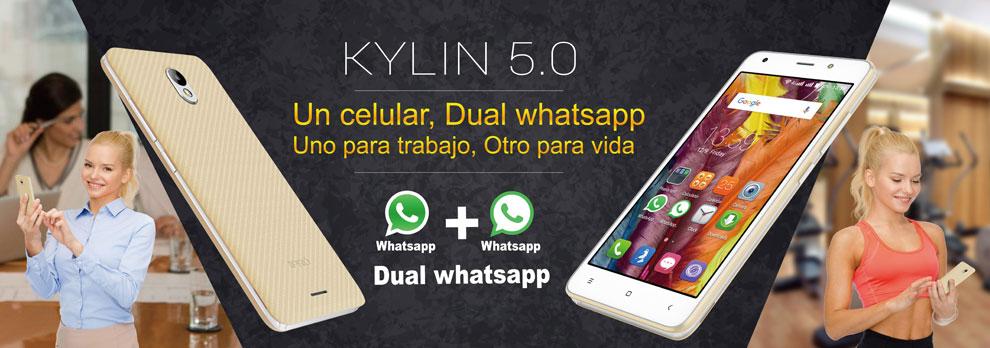 KYLIN 5.0